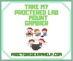 Take My Proctered Lab Mount Gambier